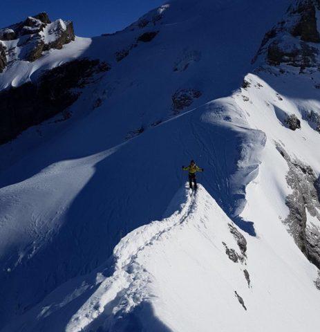 Ski instructor training